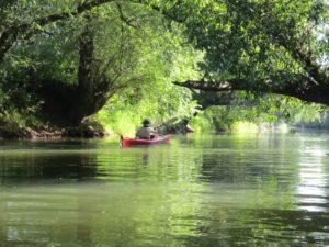 Wasserwandern auf der Werra
